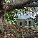 St Stephens Fig by Michael Matthews