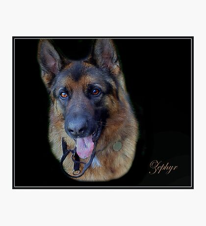 Zephyr - Portrait Photographic Print