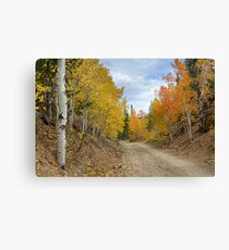Colorado Rocky Mountain Colorful Autumn Back Road Canvas Print