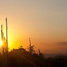 Trelawny Sunset by lilAj