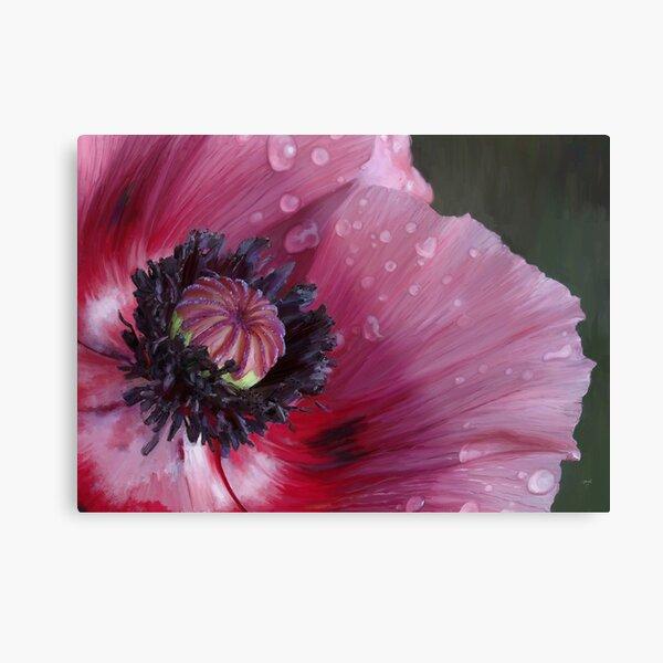 Three flowers: Red - The poppy weeps Metal Print