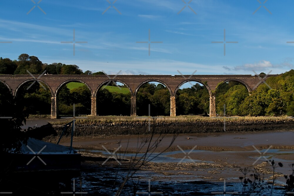 Forder Viaduct by Country  Pursuits