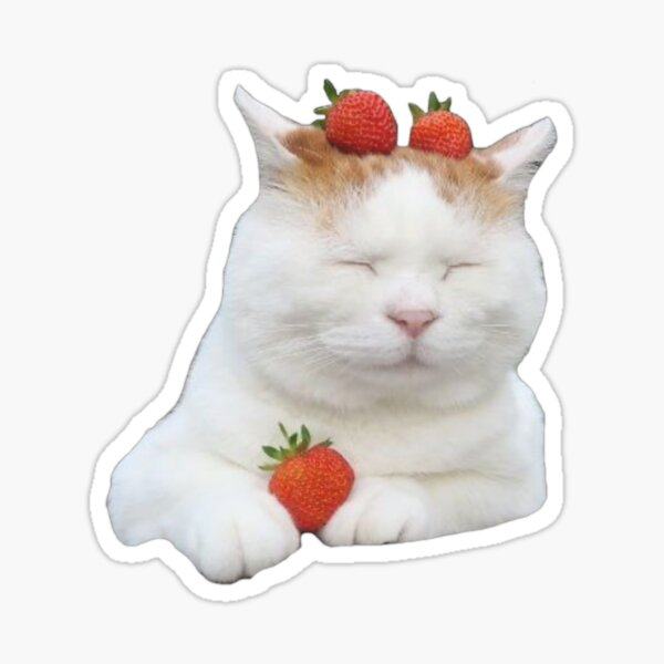 cottagecore kitty Sticker