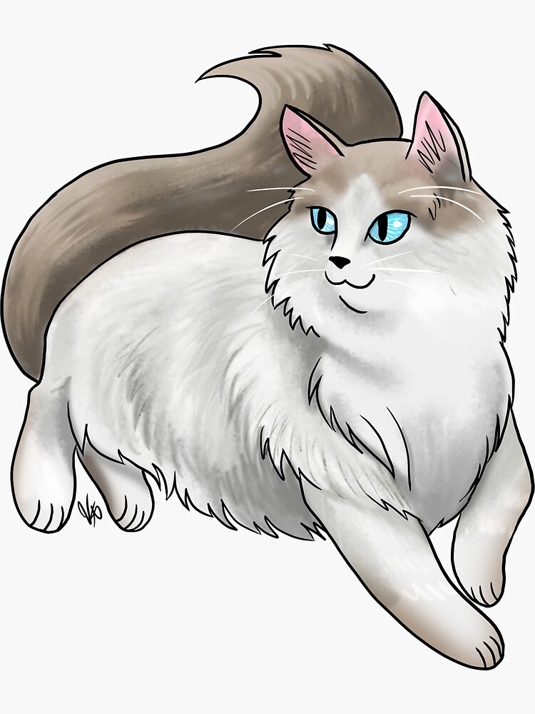 Ragdoll Cat - White and Tan by jameson9101322