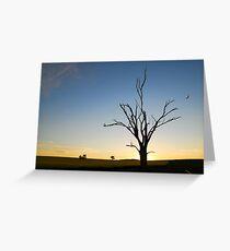 Sunset Soaring Greeting Card