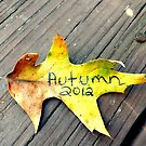Autumn 2012 by melly07