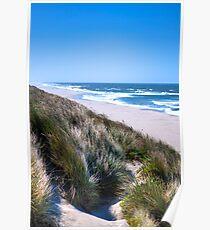 Furry Sand Dunes Poster