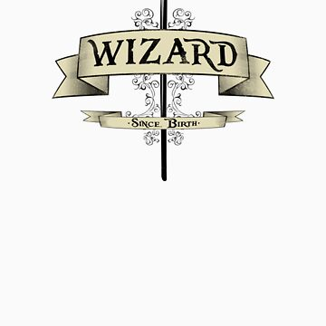I'm a WIZARD! by GriffintheMad