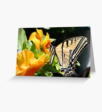 The Monarch reigns Greeting Card