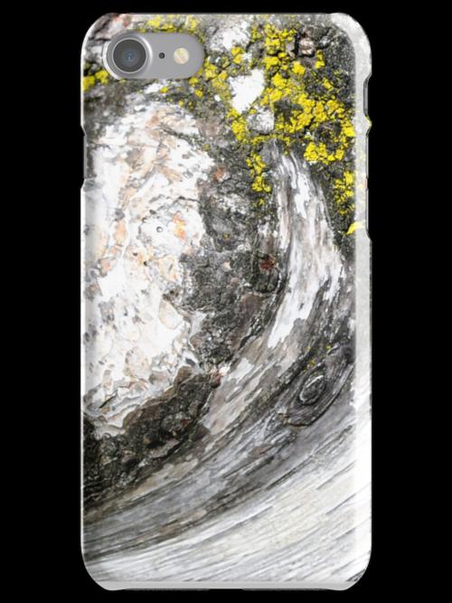 Birch Bark iphone case by Elaine  Manley
