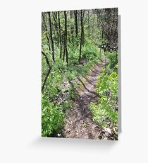 Narrow Path Through The Woods Greeting Card