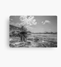 Fishing at Fort Montagu in Nassau, The Bahamas Canvas Print