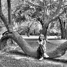 Bent Tree Portrait by Michael  Herrfurth