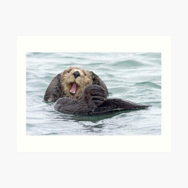 Happiness is a wet otter Art Print