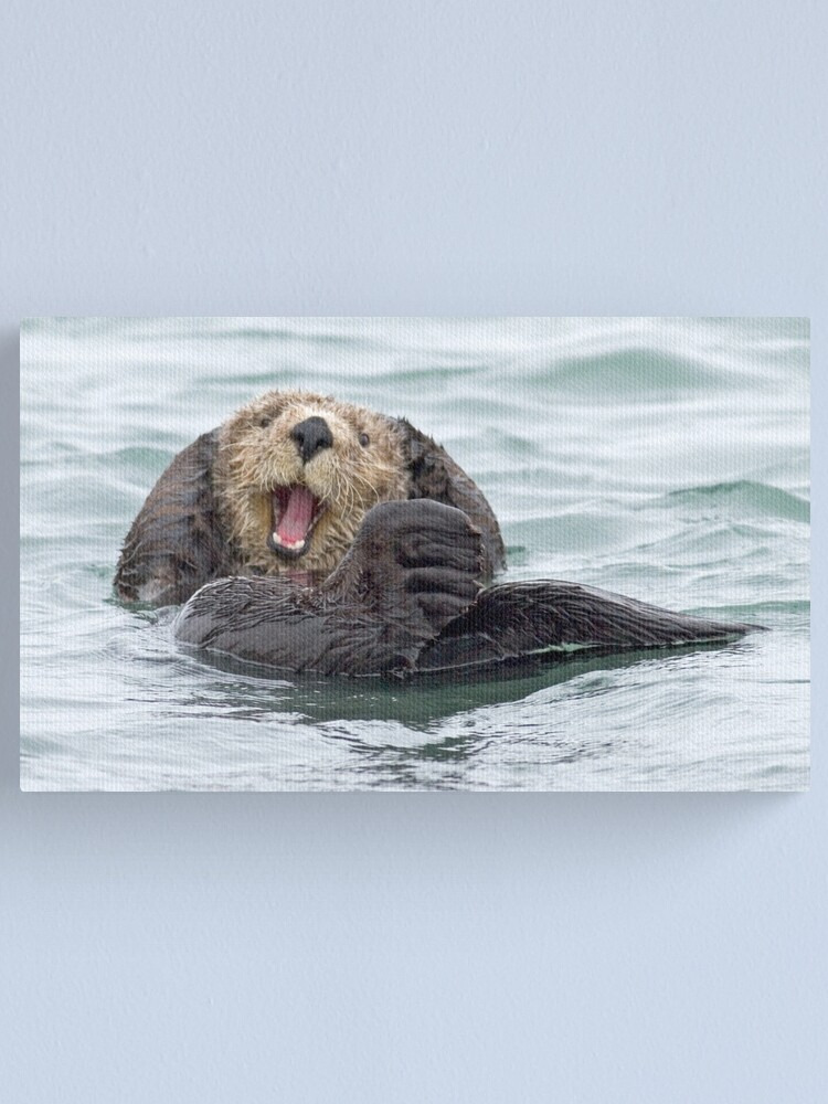 Alternate view of Happiness is a wet otter Canvas Print
