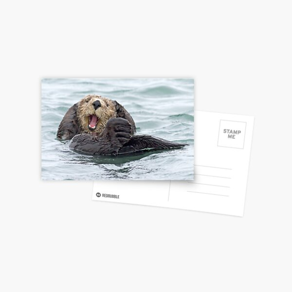Happiness is a wet otter Postcard