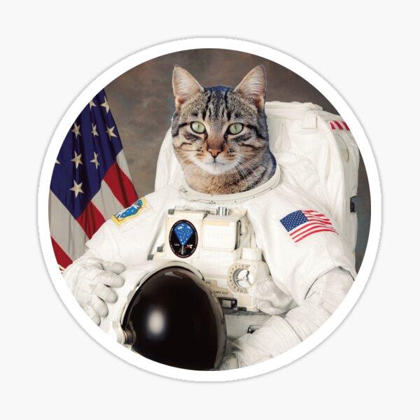 ASTRO CAT Sticker