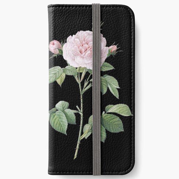 Pink rose botanical illustration iPhone Wallet