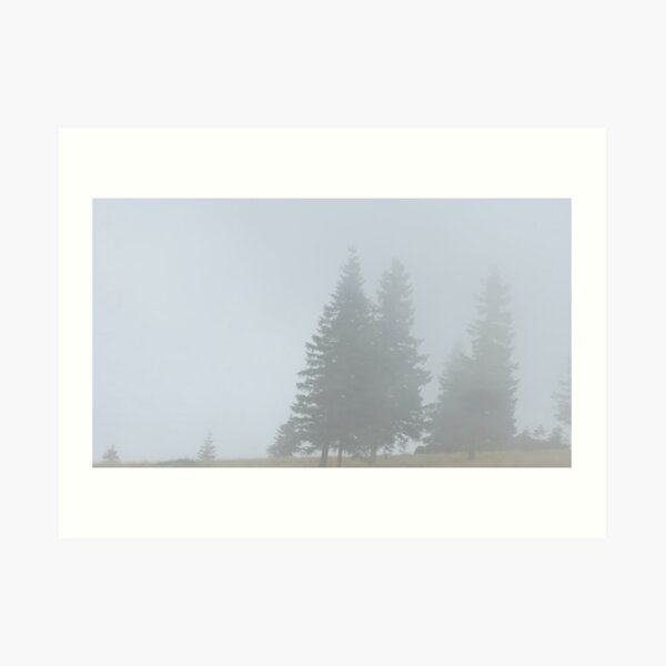 lonely trees in the morning mist Art Print