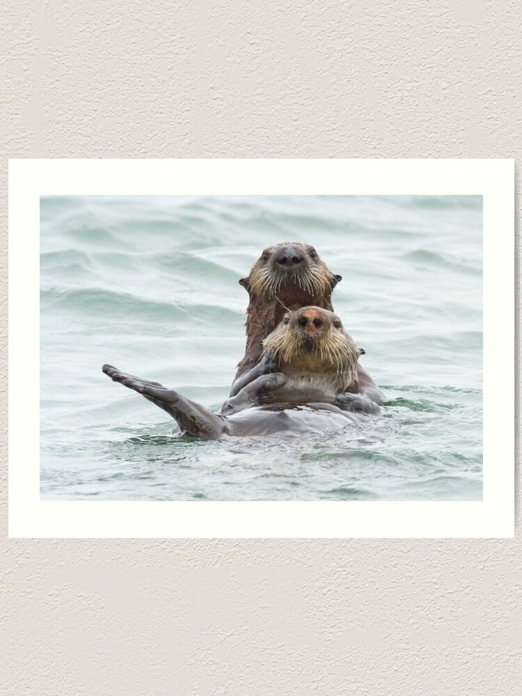 Alternate view of Two otters for the price of one Art Print