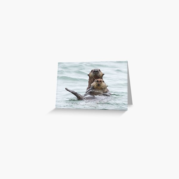 Two otters for the price of one Greeting Card