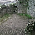 Raglan Castle walls and patterned paving by Grace Johnson
