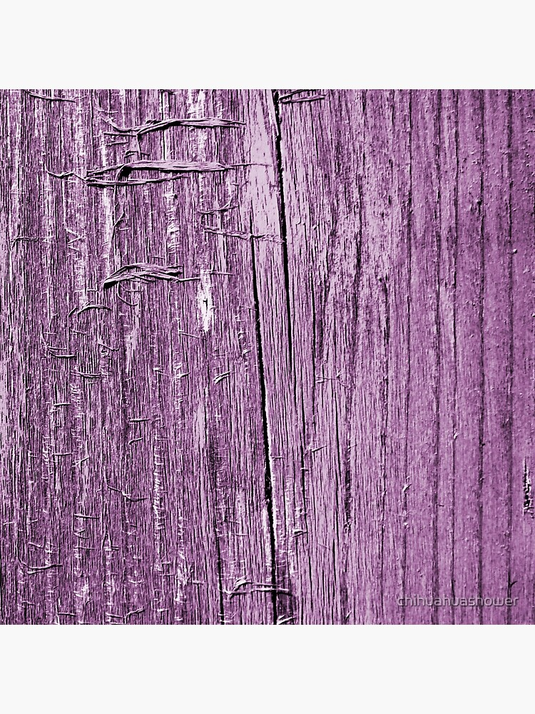 Rustic violet by chihuahuashower
