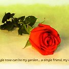 A Single Rose by Amiteestoo
