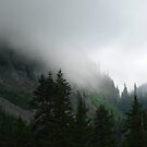 Mountain Mist by Adasyd