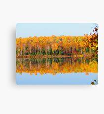 Fall , Island lake, Ontario Canvas Print