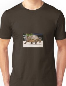 Marching Baby Tortoise  T-Shirt