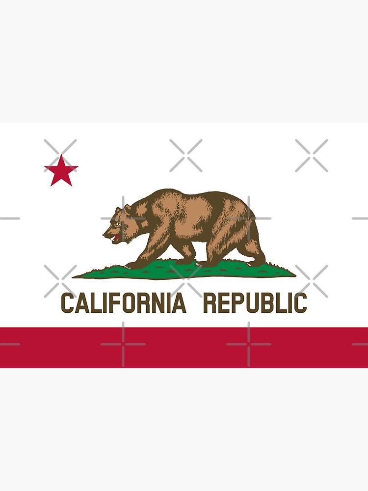 California CA Official State Flag by states