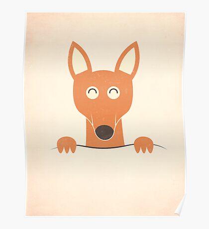 Pocket Kangaroo Poster