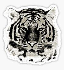 Tiger Face Close-up Sticker