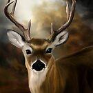 Deer by Karri Klawiter