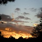 Flagstaff Sunset by Robbi Levesque