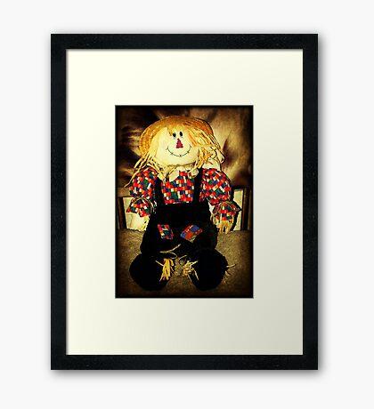 Mr. Scarecrow © Framed Print