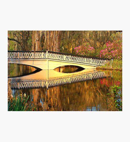 Bridge At Magnolia Plantation Photographic Print