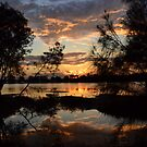 Sunset through the trees by Anthony Keevers
