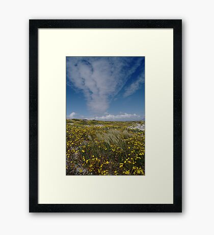 Spring is Beautiful Framed Print