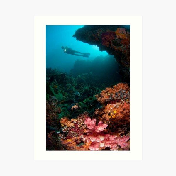 Diver in coral garden Art Print