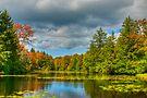 Lily Pond by JHRphotoART