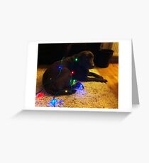 Christmas Canine Greeting Card