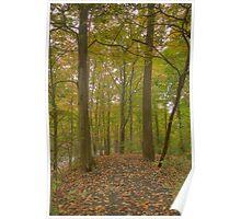 Mill Run Park, Manlius, NY USA Image 1 Poster