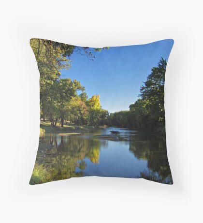 Splash of Fall Throw Pillow