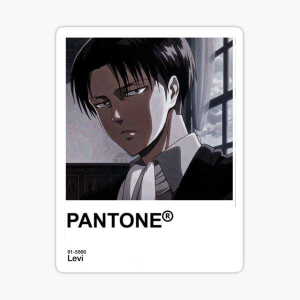 Levi Pantone Sticker  Sticker