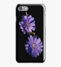 double down chicory iPhone Case/Skin