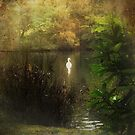 Solitude by Carol Bleasdale