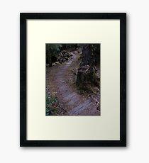 Old Board Path Framed Print