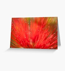 Explode... Greeting Card
